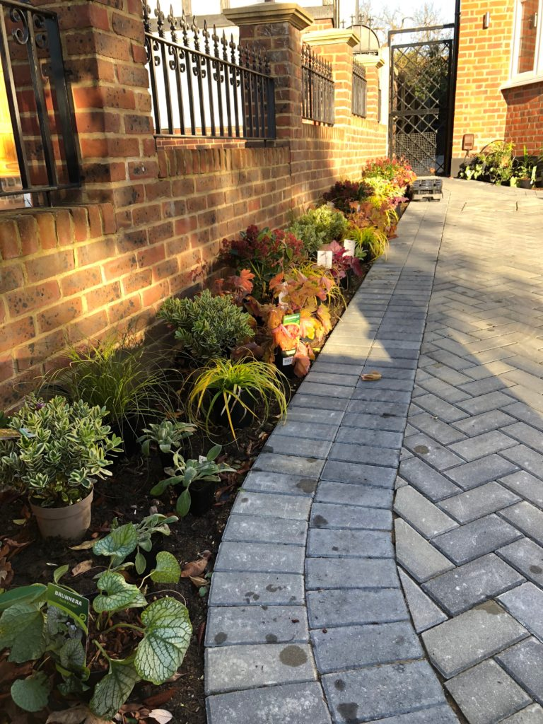 Kingston. Complimentary planting of small borders