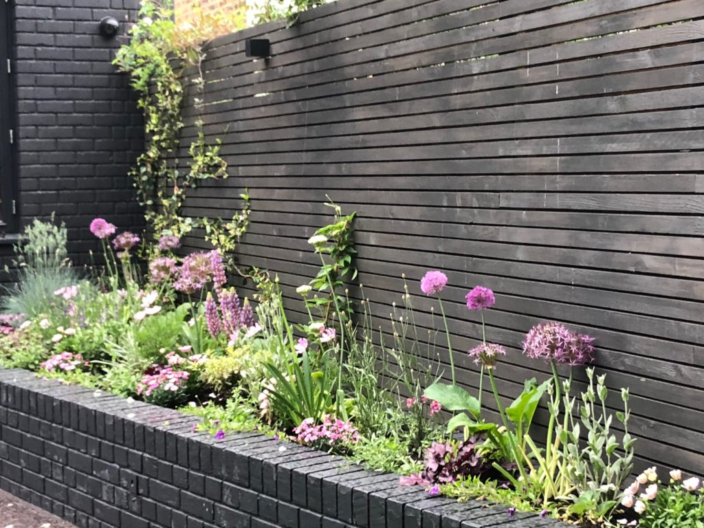 Barnes. Planting of instant flowering garden